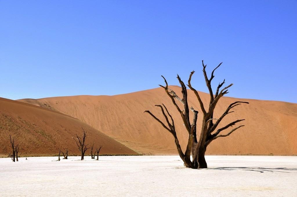 deserti-deadvlei-Namib